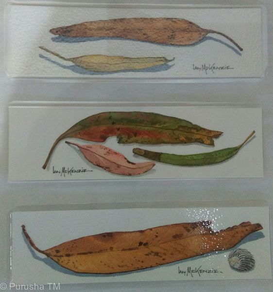 Ian McKenzie hand painted eucalyptus leaves, sea shell