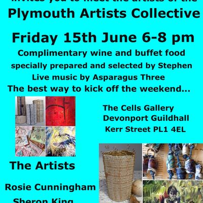Plymouth Artists Collective Meet the Artists