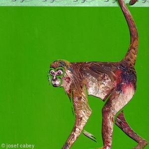Spider Monkey: Animals of the Caribbean series