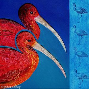 Scarlet Ibis: Animals of the Caribbean series