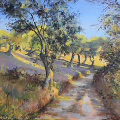 Olive Groves in Autumn