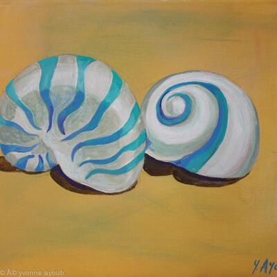 Rodios Shells
