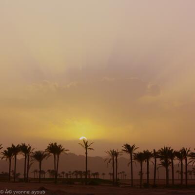 Dusk in Sinai
