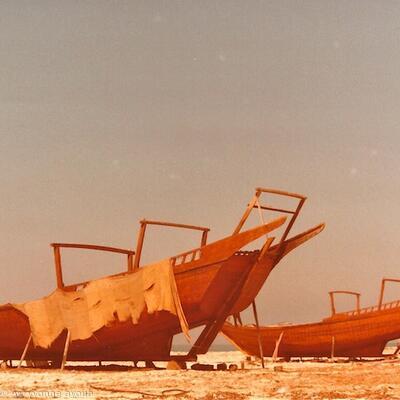 Ajman Dhows