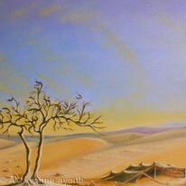 Saudi Desert Bedouin Tent