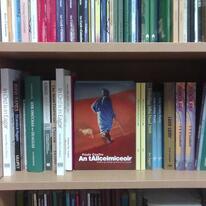 Paolo Coelho's 'The Alchemist An tAilceimiceoir
