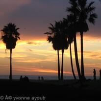 Venice Beach CA USA