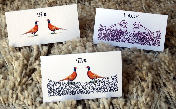 Place Name Cards With Images Examples We Can Produce Any