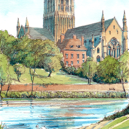 Worcester Cathedral with the River Severn,  Swans, greeting card