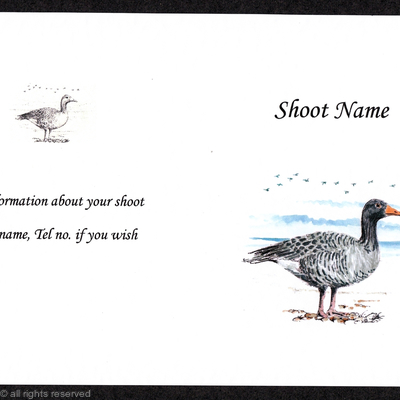 Buy now shoot / game card pack of 20 Pink Foot Goose coloured