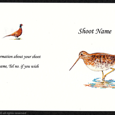 Buy now pack of 20 snipe shoot card coloured