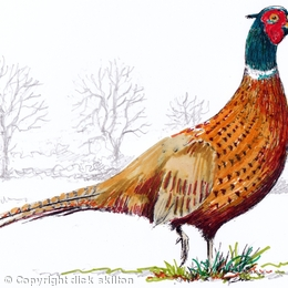 standing pheasant coloured greeting card