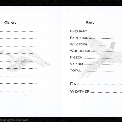 Shoot card inside, 9 guns light duck and pheasant watermarks, date and weather