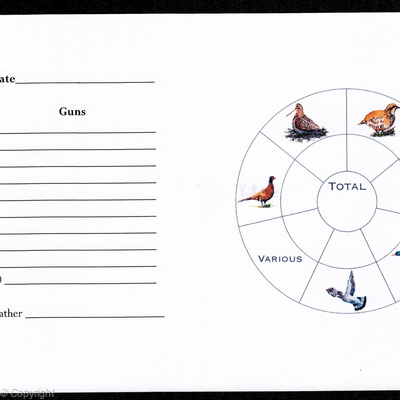 Example of a shoot card inside with coloured bird wheel