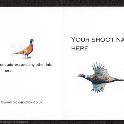 Example of traditional size shoot card ( 4