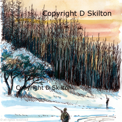 Winter trees & high pheasants