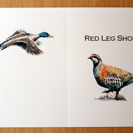 red leg shoot card coloured