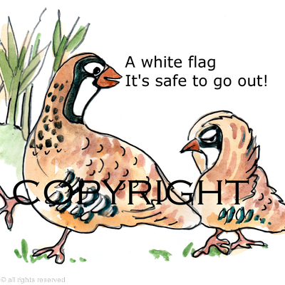 The white flag cartoon possible image for shoot card or game card