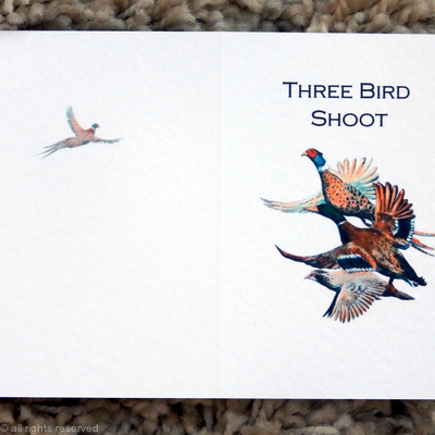 three birds possible shoot card image