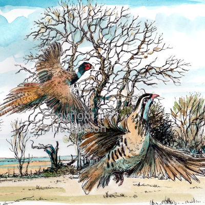 Old tree with pheasant and partridge, possible shoot card image