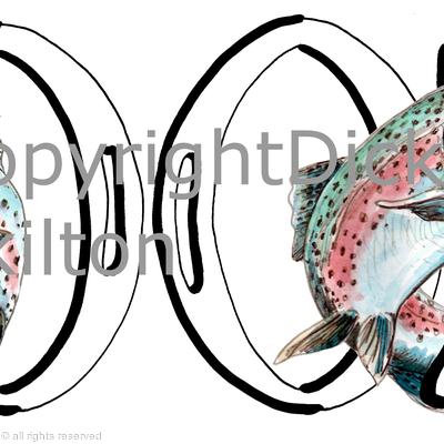 2002 birthday card rainbow trout (any year available)