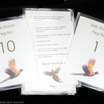 Peg cards with rules, numbered  1 to 10 and rules, laminated.