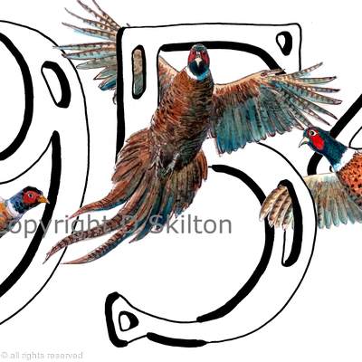 1954 Three Pheasants Unique Birthday Card Image Any Year Available In This Style Just