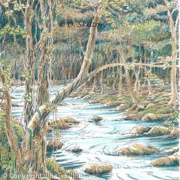 The River at nant Col Nr. Harlech N. Wales