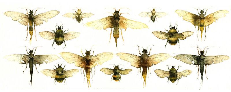 KO.25 woodwasps &  bumblebees