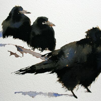 Rooks in Snow