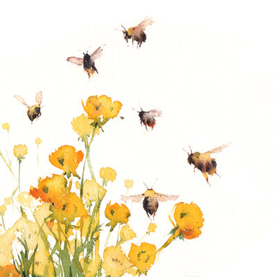 Bees and Buttercups