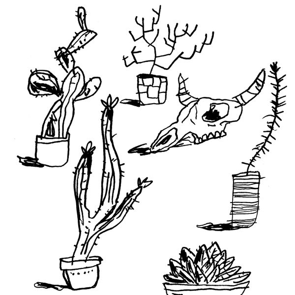 cacti and skull