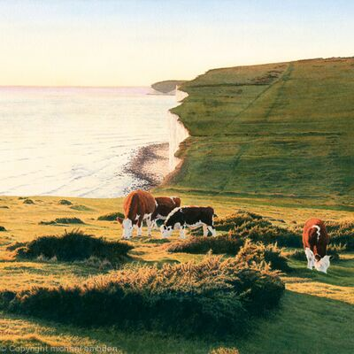 Cliffs and Cows