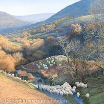 Valley with Sheep - Brecon Beacons