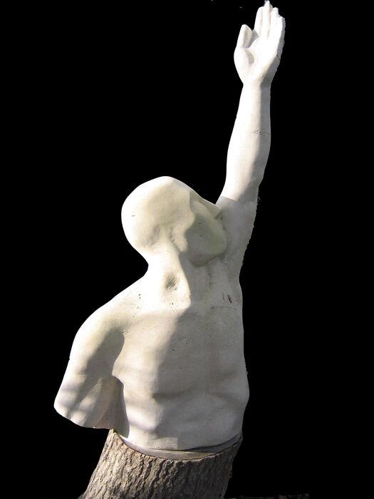 reach for the sky (2004)