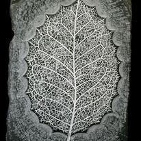 leaf (2012)