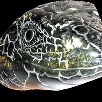 lizard head I