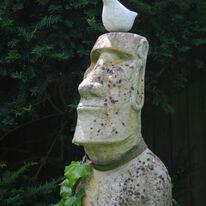 head bird (2016)