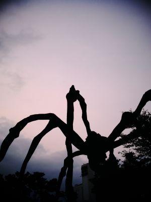 big spider of roppongi
