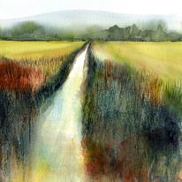 Sussex Stream
