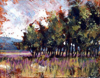 A rustle of Birches