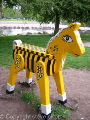 Hull City play horse