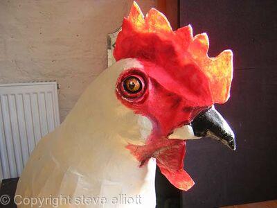 big chicken head