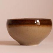 Hare Fur Rice Bowl