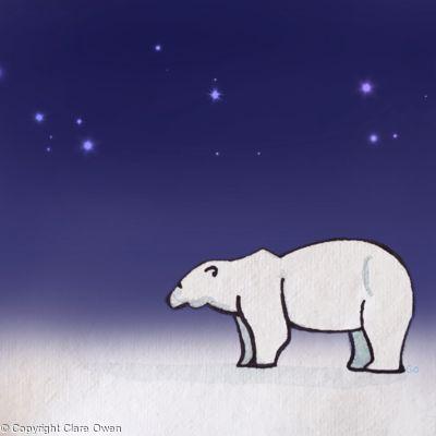 Svalbard Bear