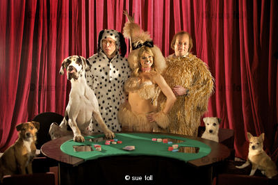Want To Make Extra Money? Do It Online 228858_dog-poker-from-that-mitchell-and-webb-look-series-4