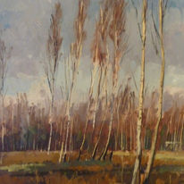 Beckley Birch trees