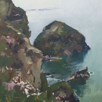 Cliffs and wild flowers, Bedruthan steps