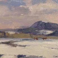 Horses in the snow,Colorado