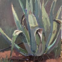 Agave Study, Portugal